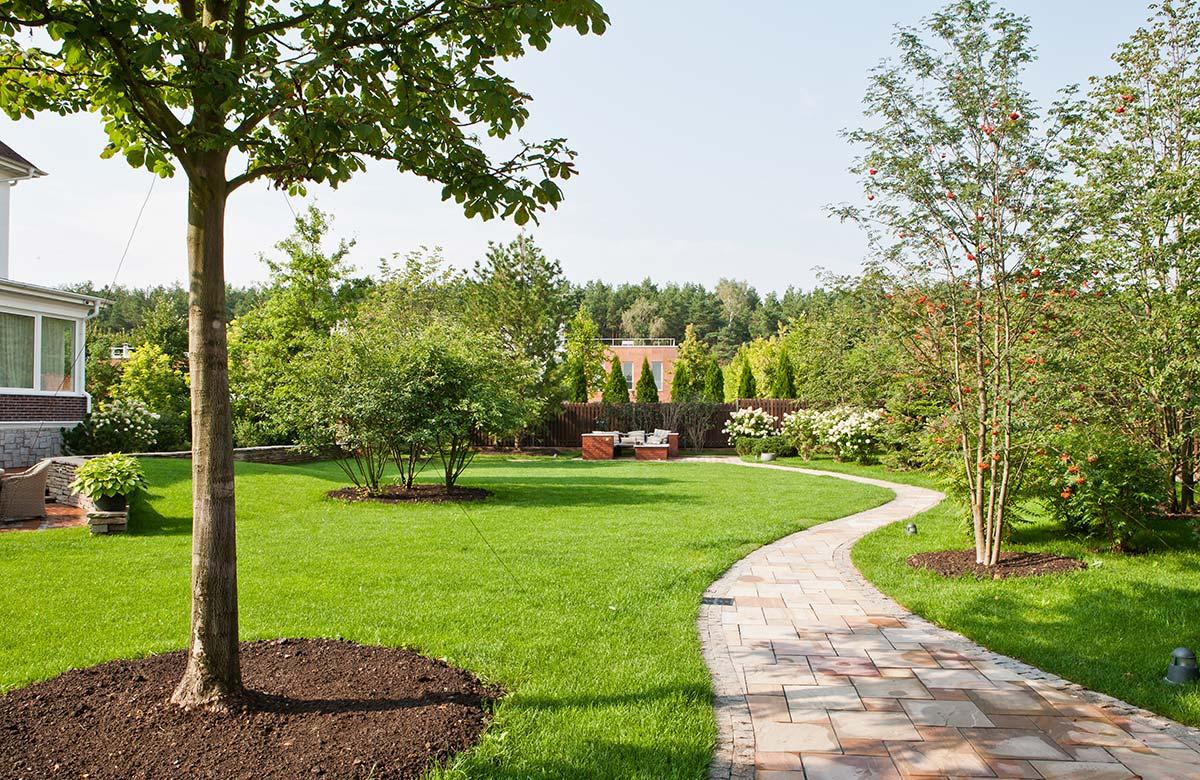 Gartenbau Baum Rasenfläche Weg