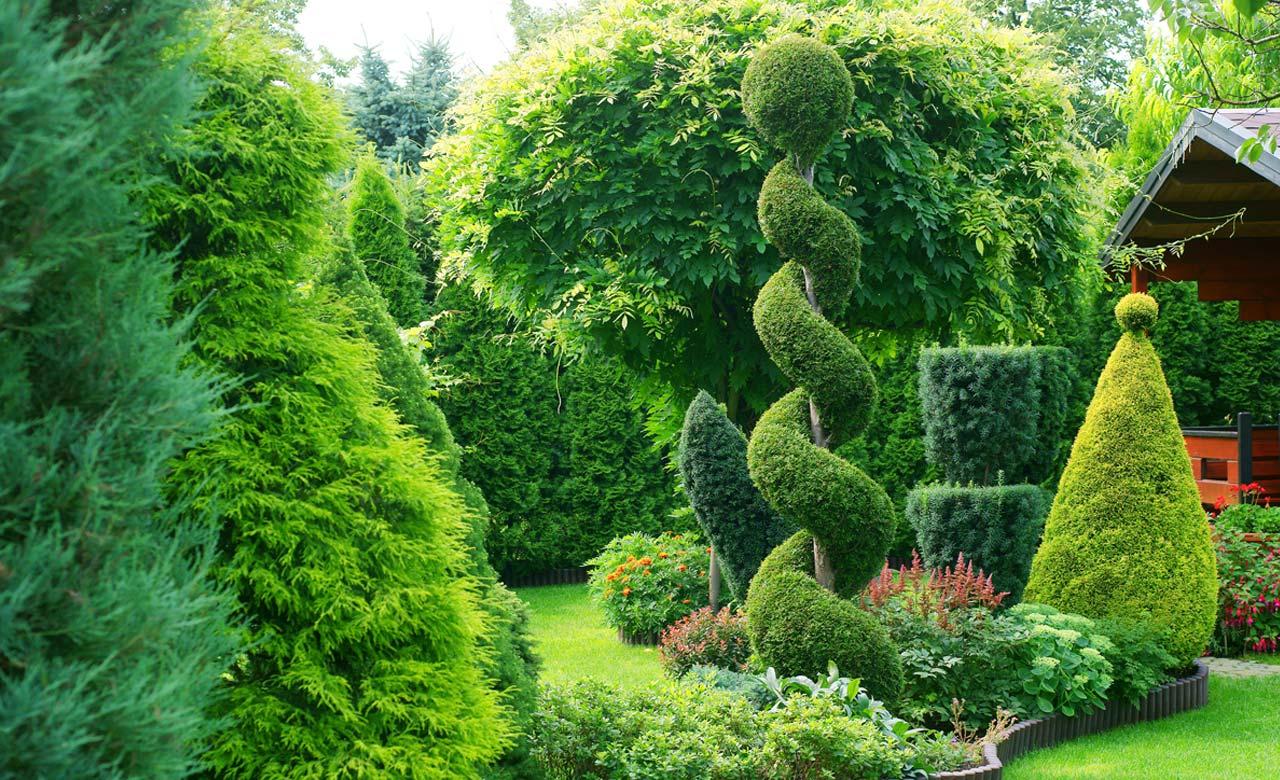 Gartenbau Donaueschingen Baden-Württemberg