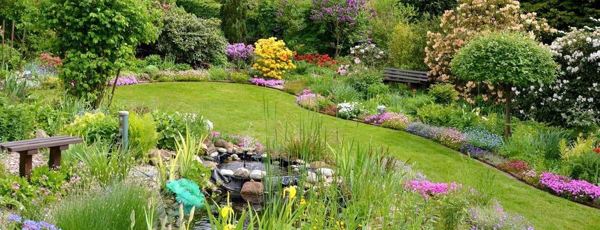 Gartenbau Vielfalt im Garten mit Teich