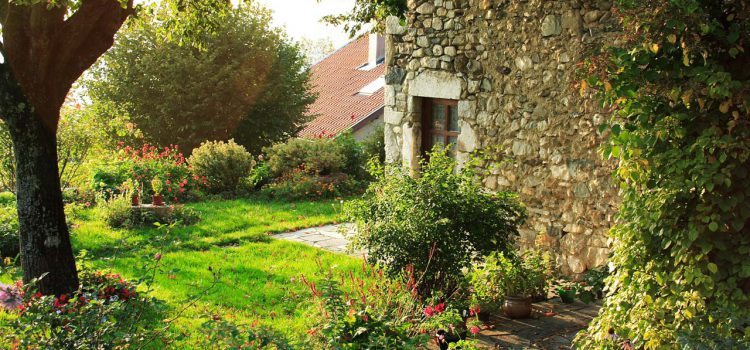 Gartengestaltung Sindelfingen: Gartenbau / Gartenpflege