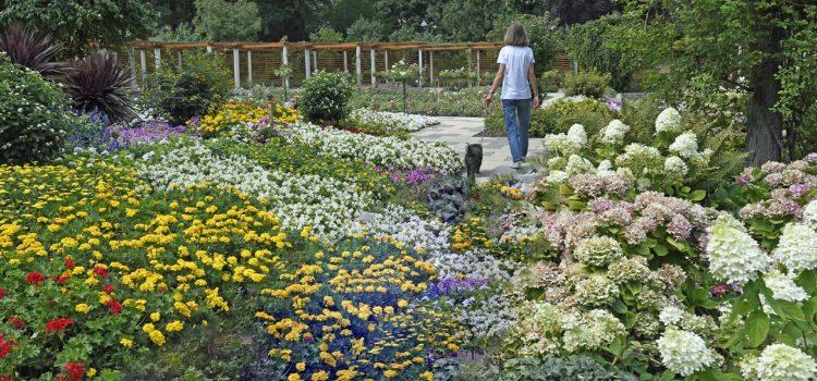 Gartengestaltung Bad Salzungen Thüringen