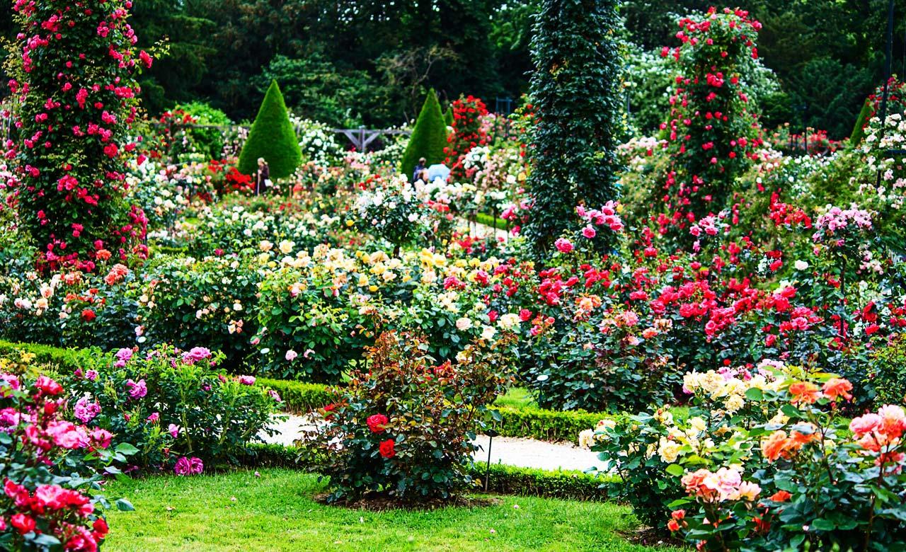 Gartengestaltung Filderstadt Baden-Württemberg