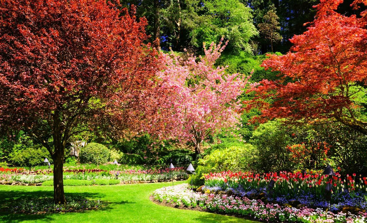 Gartengestaltung Forchheim Bayern