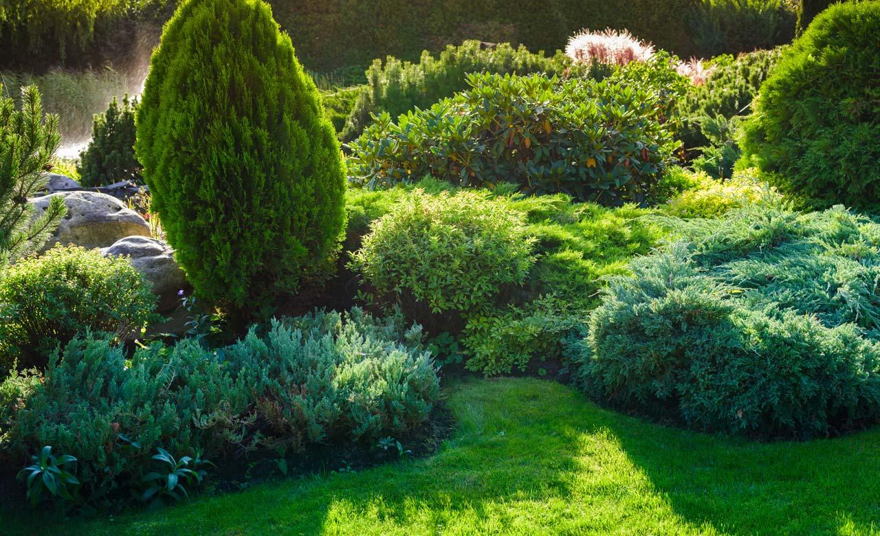 Gartengestaltung Neuburg an der Donau Bayern