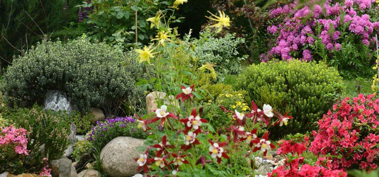 Gartengestaltung Olching Bayern