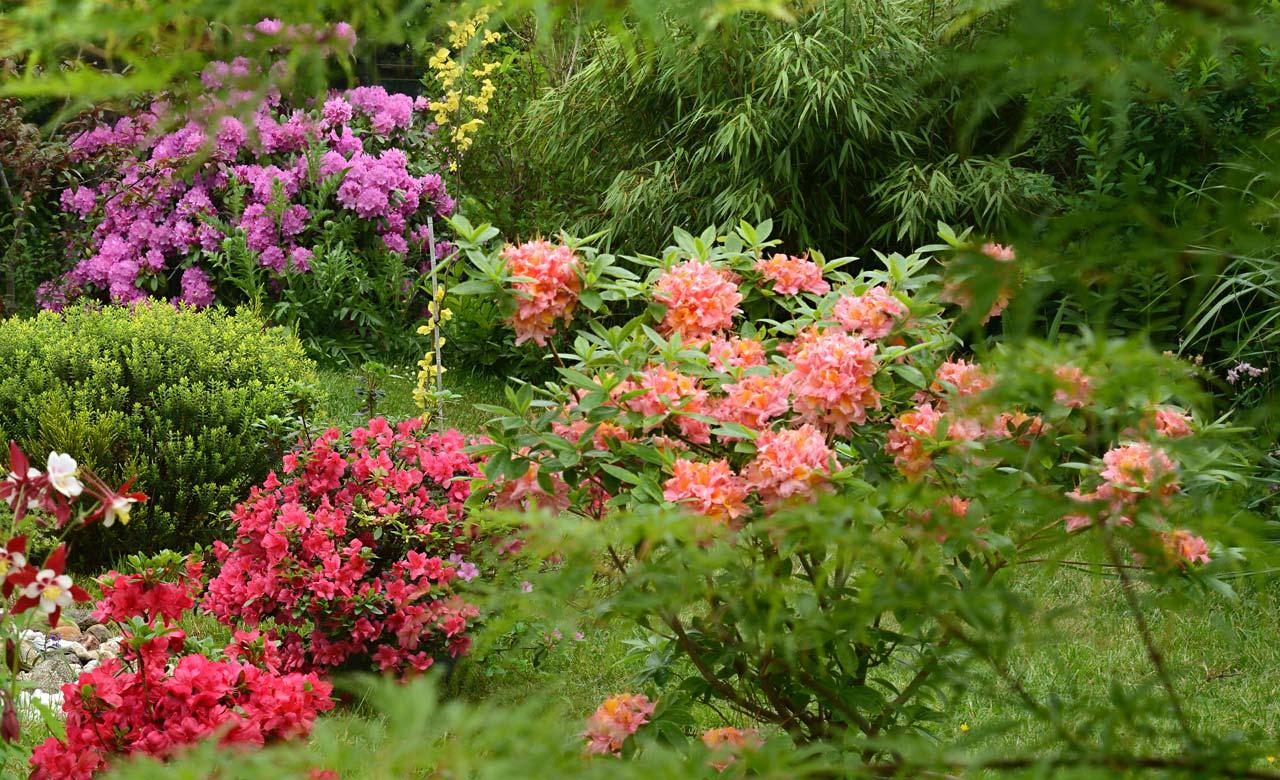 Gartengestaltung Roth Bayern