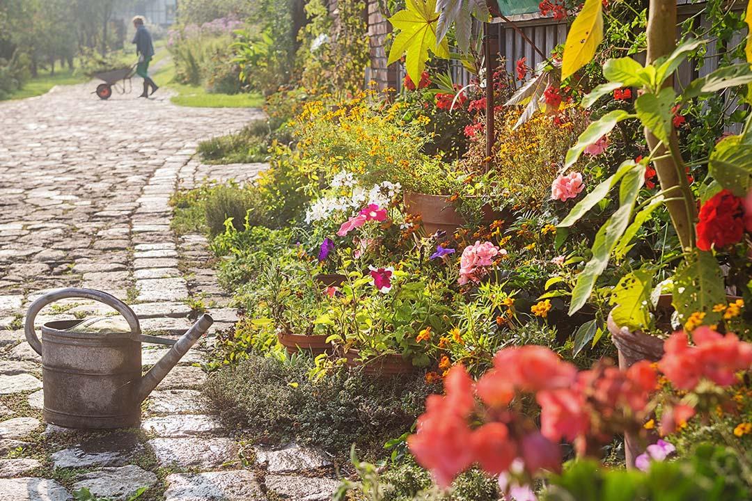 Gartengestaltung Thüringen
