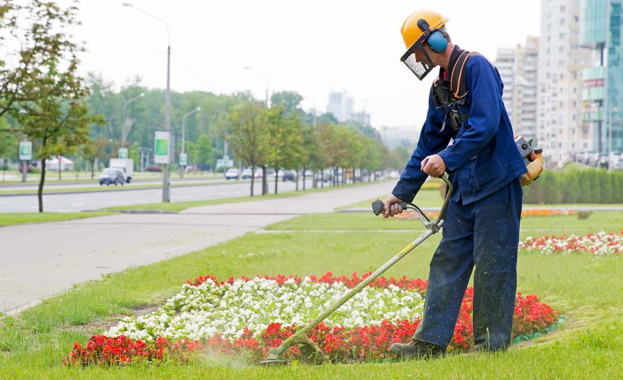 Gartenpflege Germering Bayern