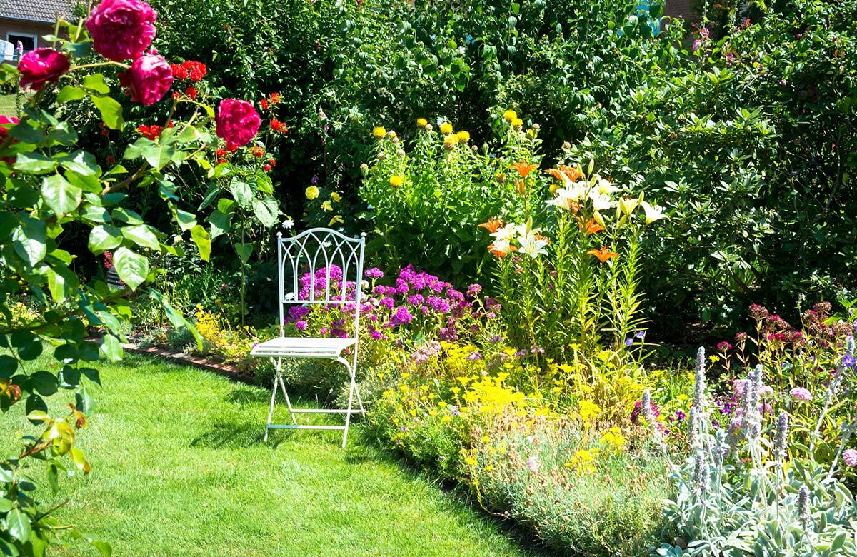 Ziergarten blühende Blumen