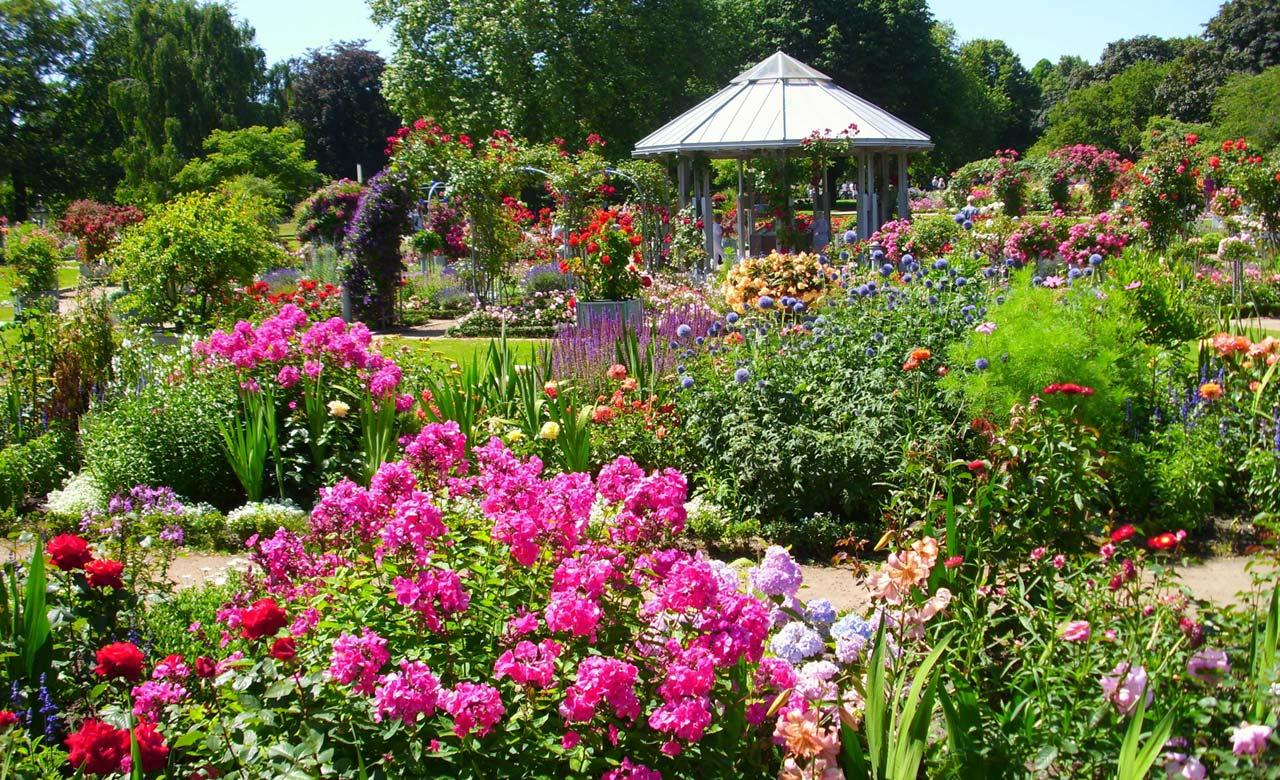 Gartengestaltung Bergheim Nordrhein-Westfalen