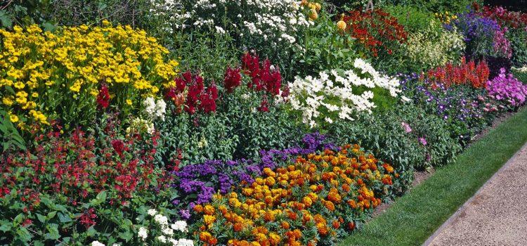 Gartengestaltung Meiningen Thüringen