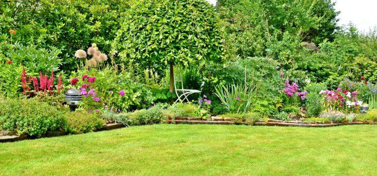Gartengestaltung Neunkirchen Saarland