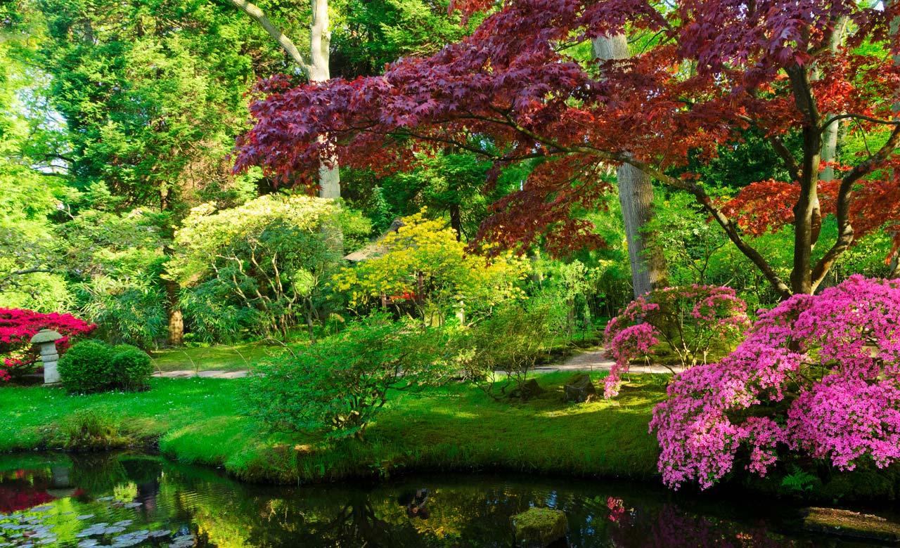 Gartengestaltung Neuruppin Brandenburg