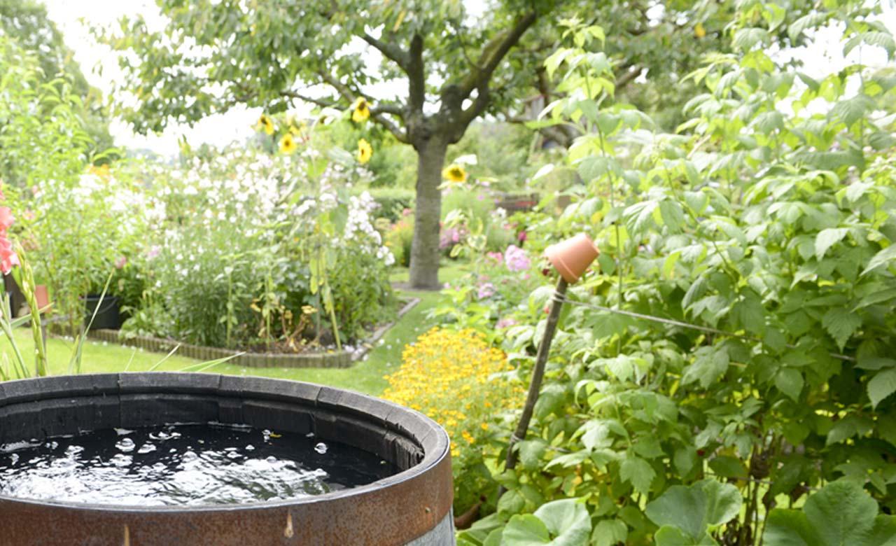 Gartengestaltung Puchheim Bayern