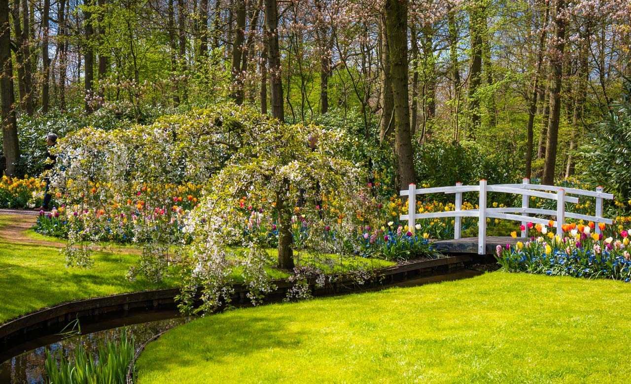 Gartengestaltung Rudolstadt Thüringen