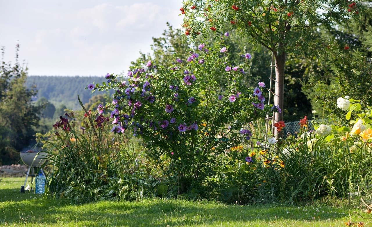 Gartengestaltung Sankt Augustin Nordrhein-Westfalen