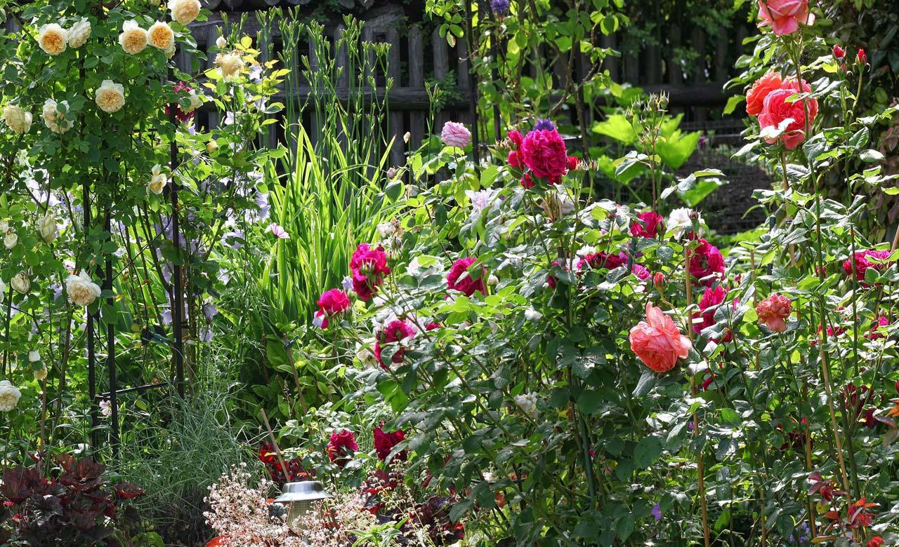 Gartengestaltung Schramberg Baden-Württemberg
