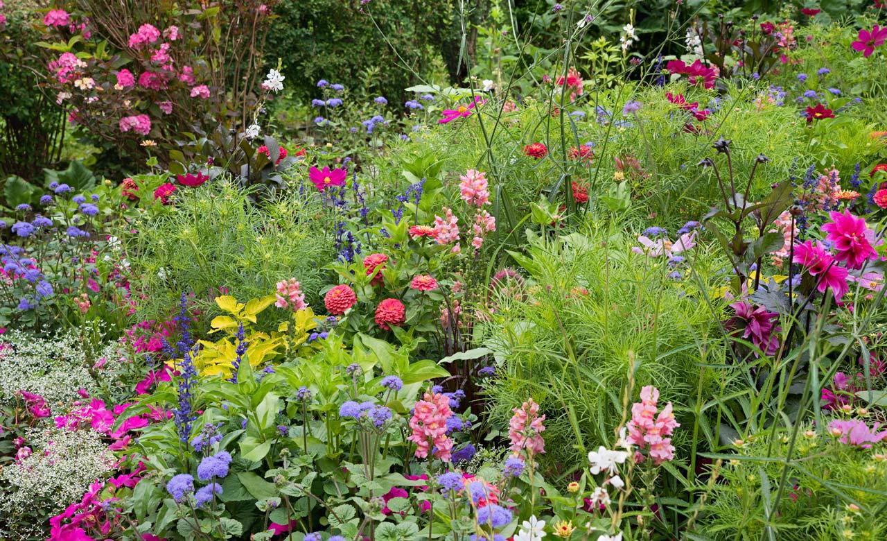 Gartengestaltung Springe Niedersachsen