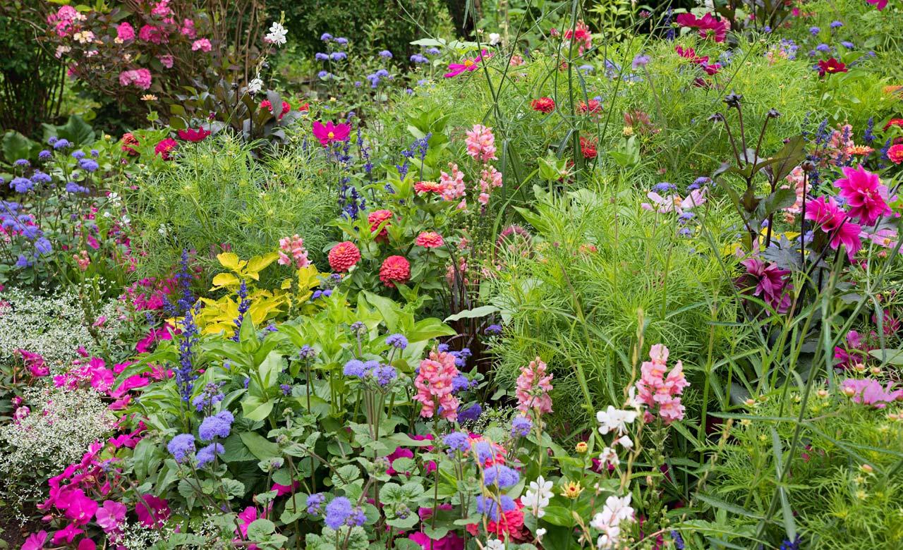 Gartengestaltung Stadthagen Niedersachsen