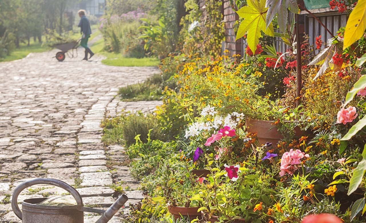 Gartengestaltung Stadtlohn Nordrhein-Westfalen
