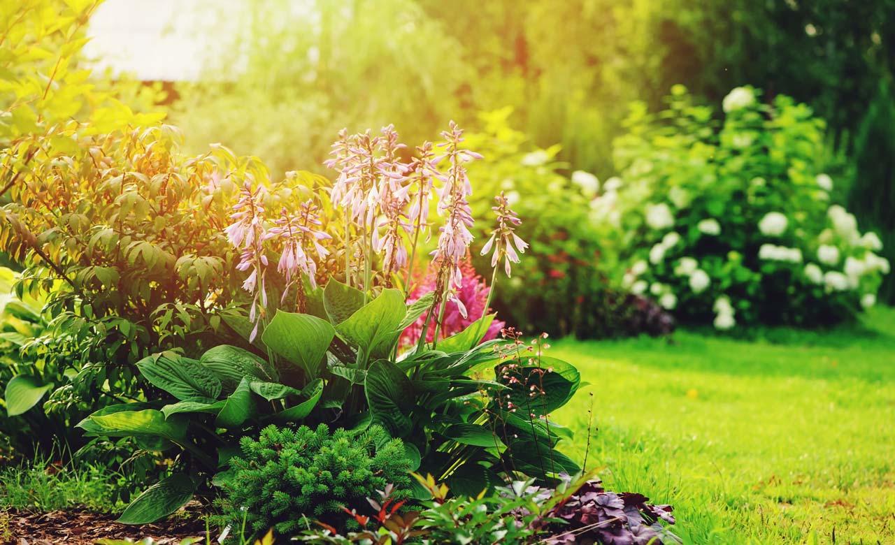 Gartengestaltung Torgau Sachsen