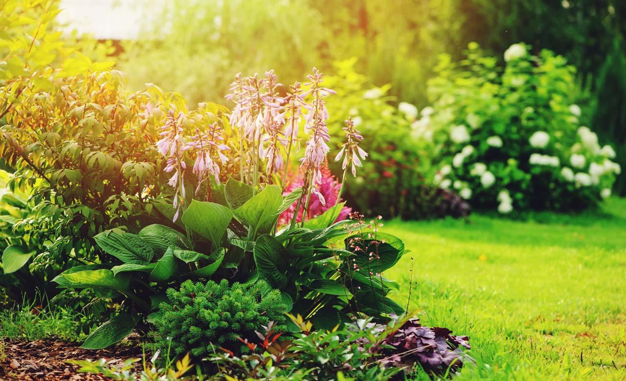Gartengestaltung Unna Nordrhein-Westfalen