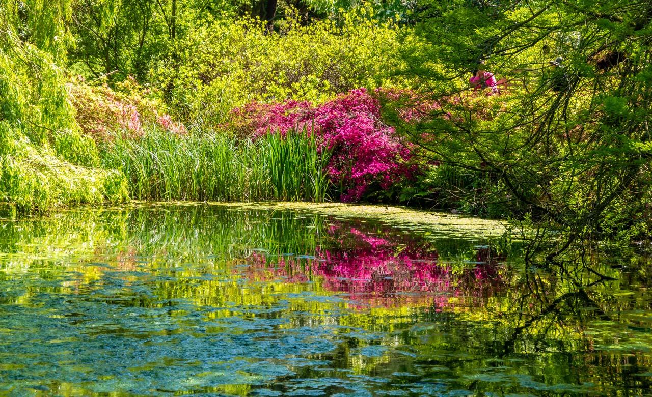 Gartengestaltung Walsrode Niedersachsen