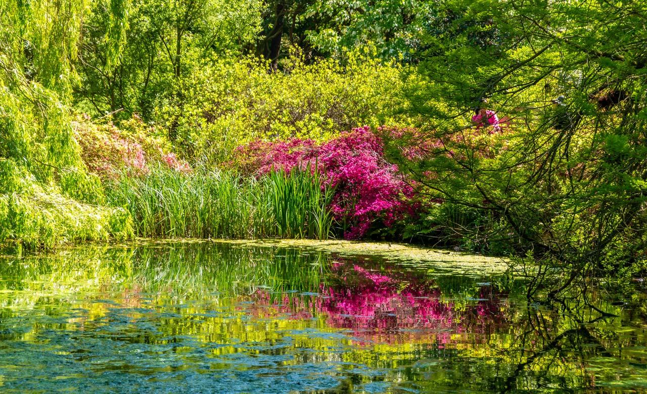 Gartengestaltung Warburg Nordrhein-Westfalen