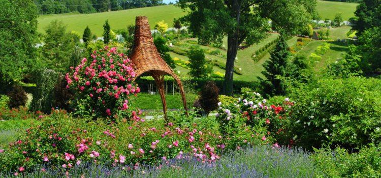 Gartengestaltung Waren Mecklenburg-Vorpommern