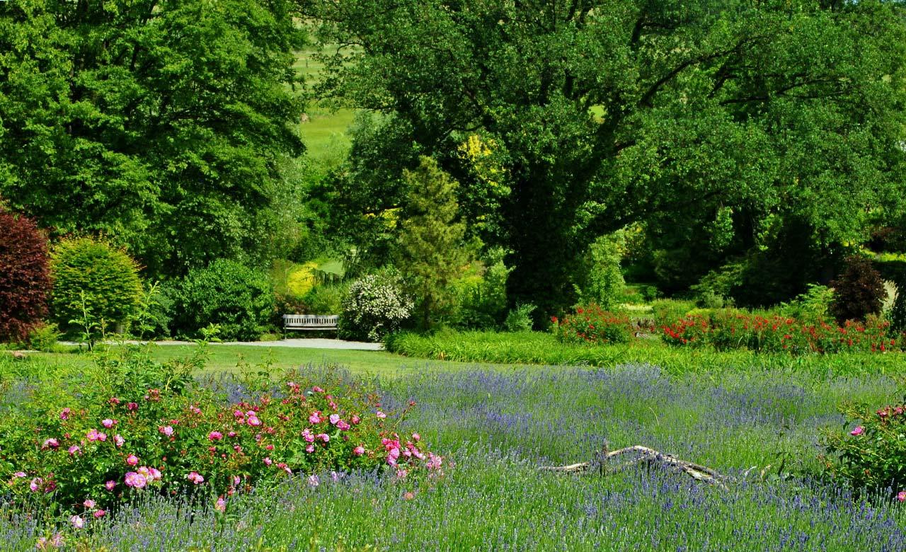 Gartengestaltung Werdau Sachsen