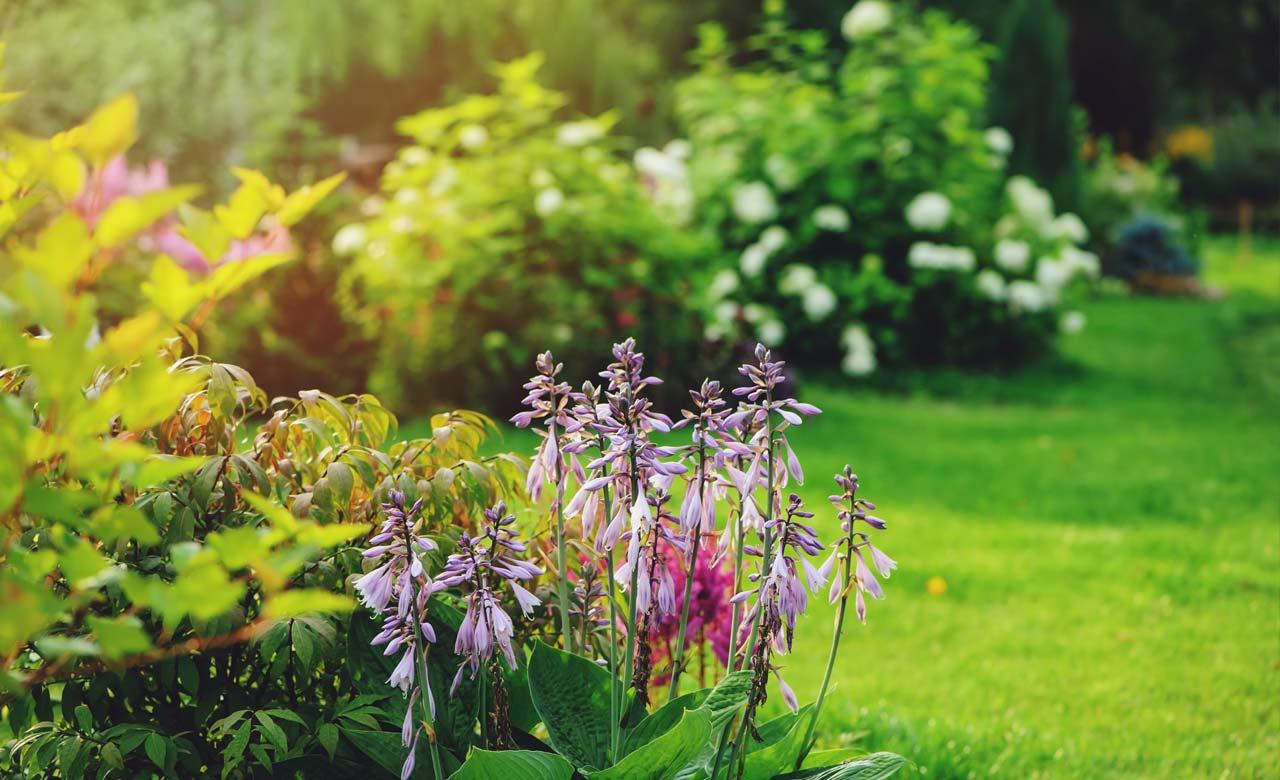 Gartengestaltung Westerstede Niedersachsen