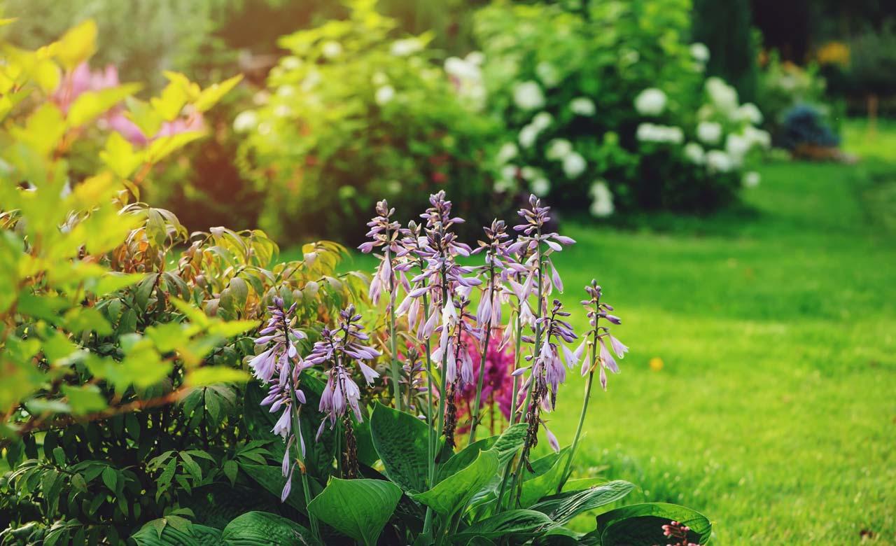 Gartengestaltung Wilnsdorf Nordrhein-Westfalen
