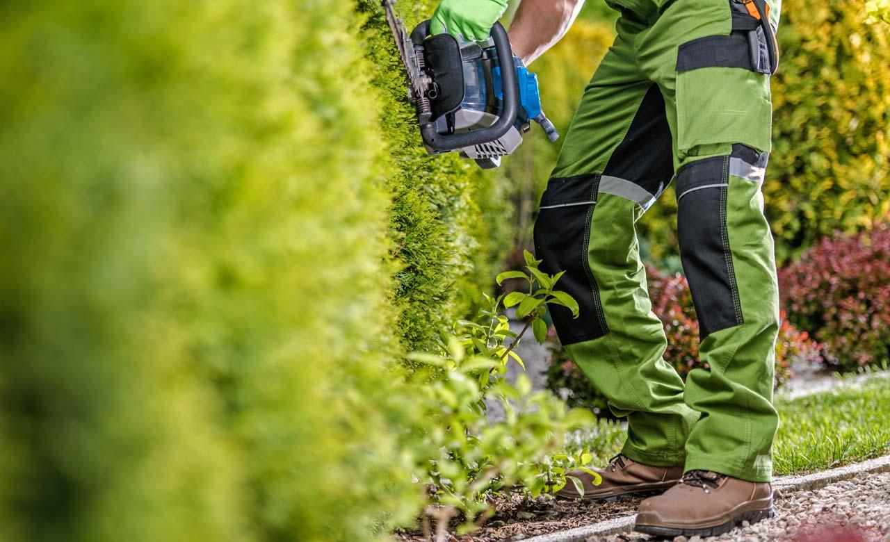 Gartenpflege Memmingen Bayern
