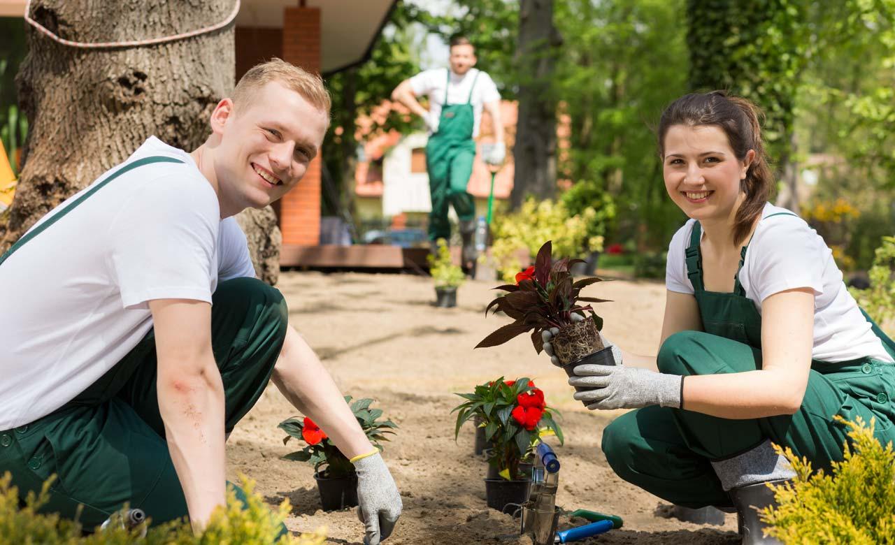 Gartenpflege Merseburg Sachsen-Anhalt