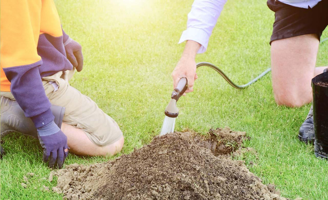 Gartenpflege Peine Niedersachsen