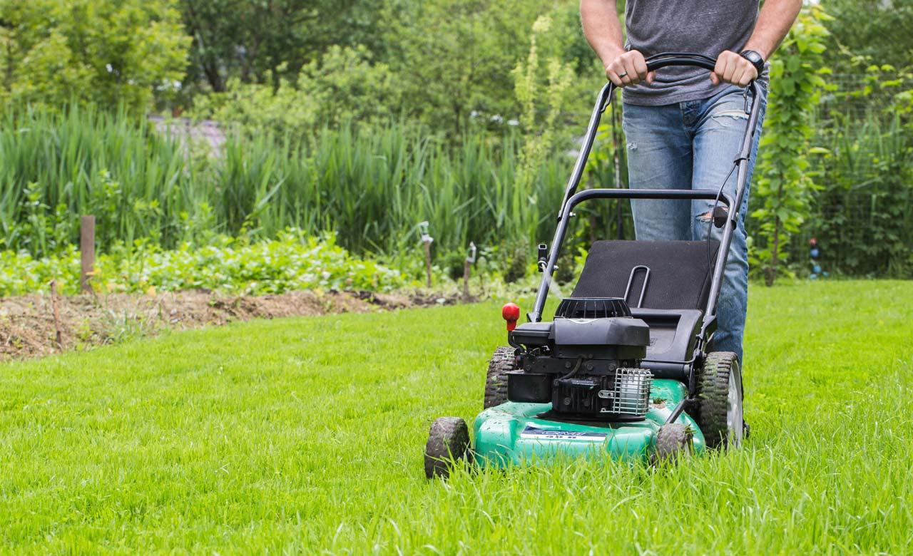 Gartenpflege Rinteln Niedersachsen