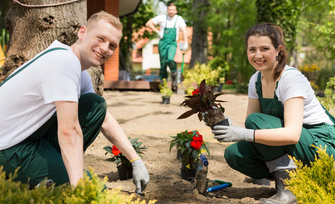 Gartenpflege Stadthagen Niedersachsen