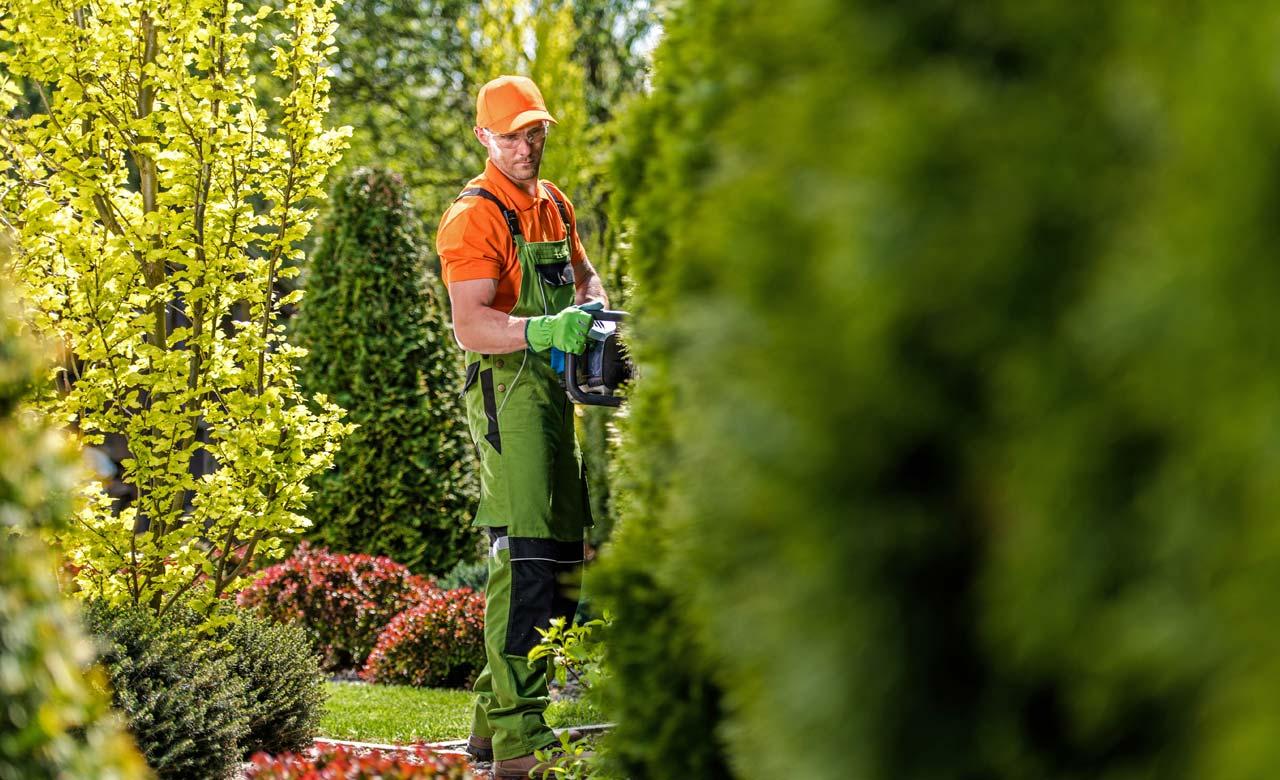 Gartenpflege Stadtlohn Nordrhein-Westfalen