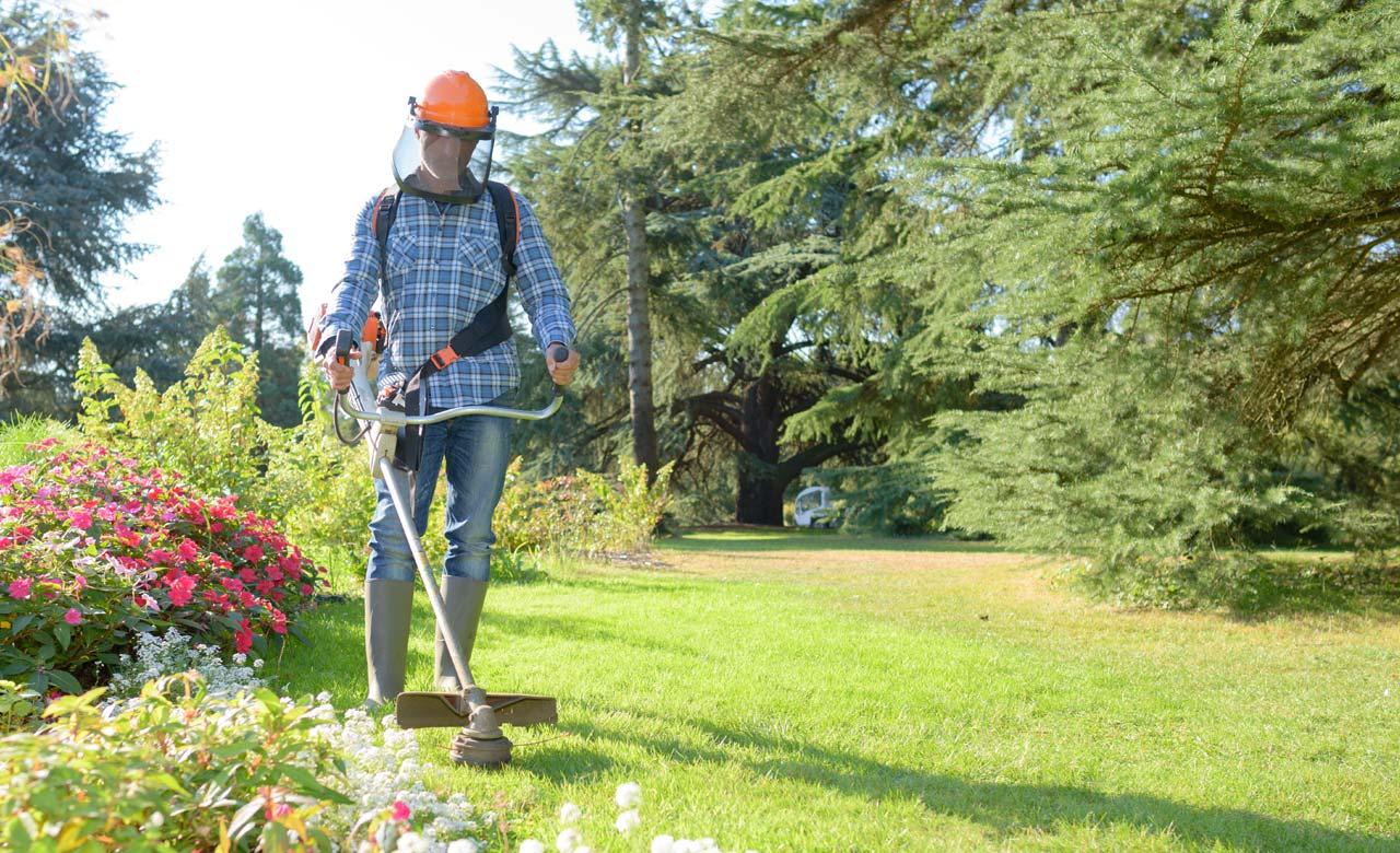 Gartenpflege Stolberg Nordrhein-Westfalen