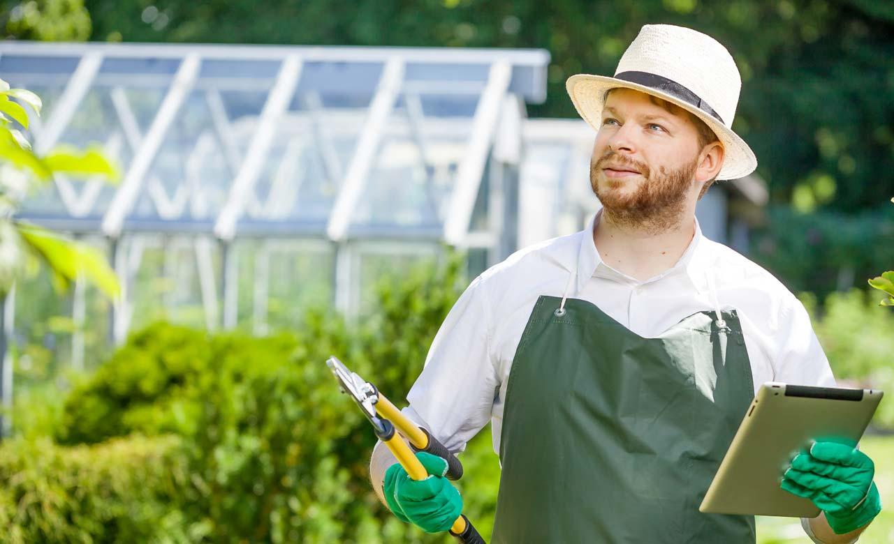 Gartenpflege Torgau Sachsen