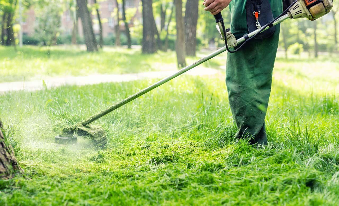 Gartenpflege Verl Nordrhein-Westfalen