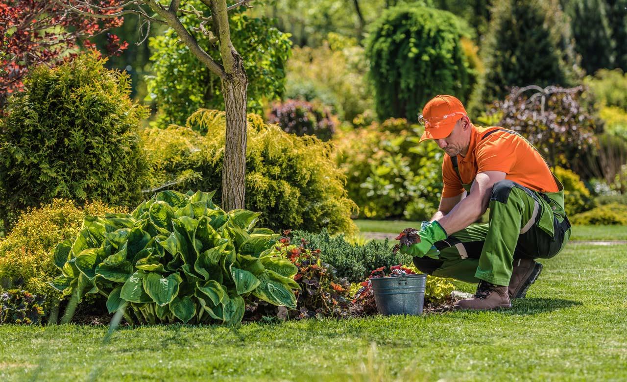 Gartenpflege Wesel Nordrhein-Westfalen