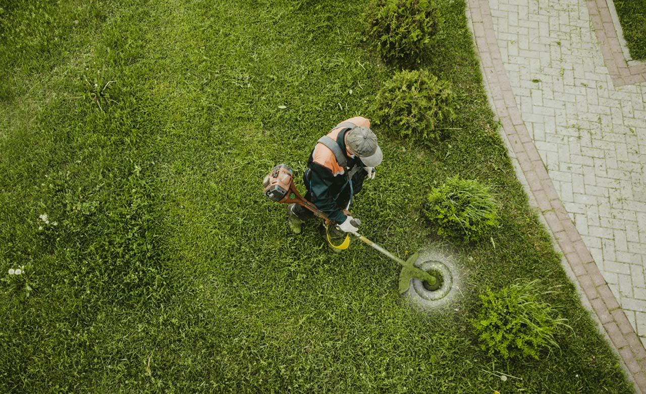 Gartenpflege Worms Rheinland-Pfalz