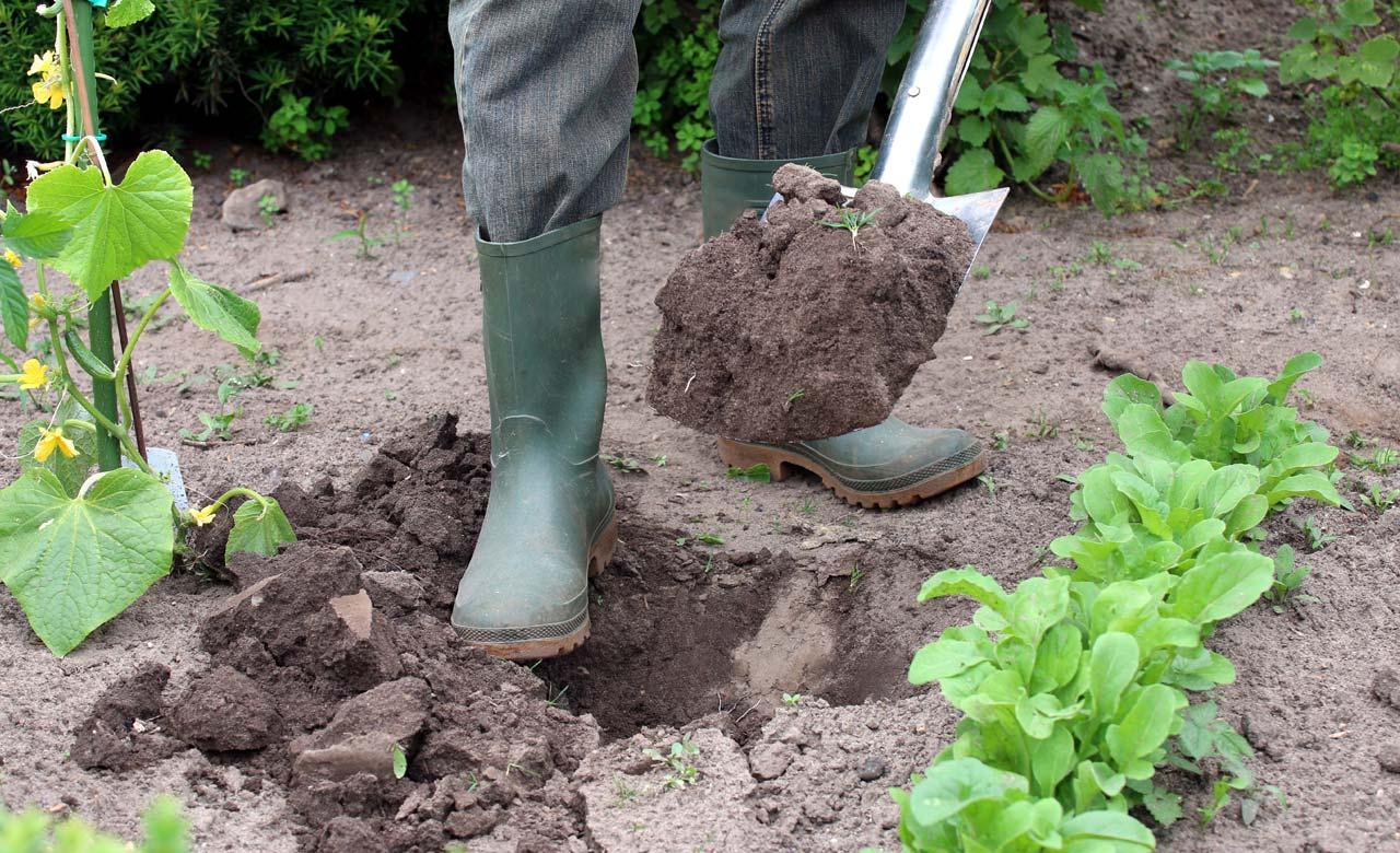 Gartenbau Bremen
