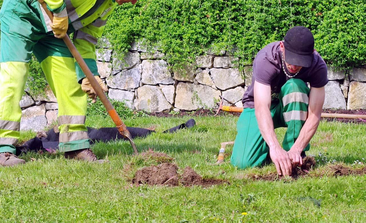 Gartenbauer Kleve Nordrhein-Westfalen
