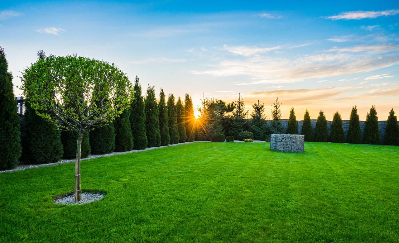 Gartengestaltung Dortmund Nordrhein-Westfalen