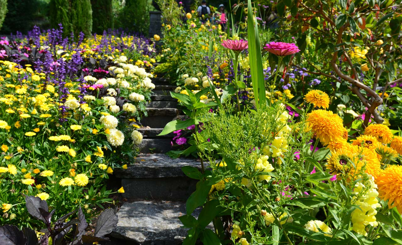 Gartengestaltung Hannover Niedersachsen