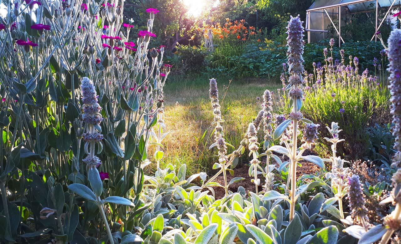 Gartengestaltung Kreuztal Nordrhein-Westfalen