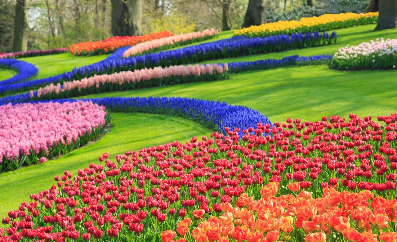 Gartengestaltung Landau in der Pfalz Rheinland-Pfalz