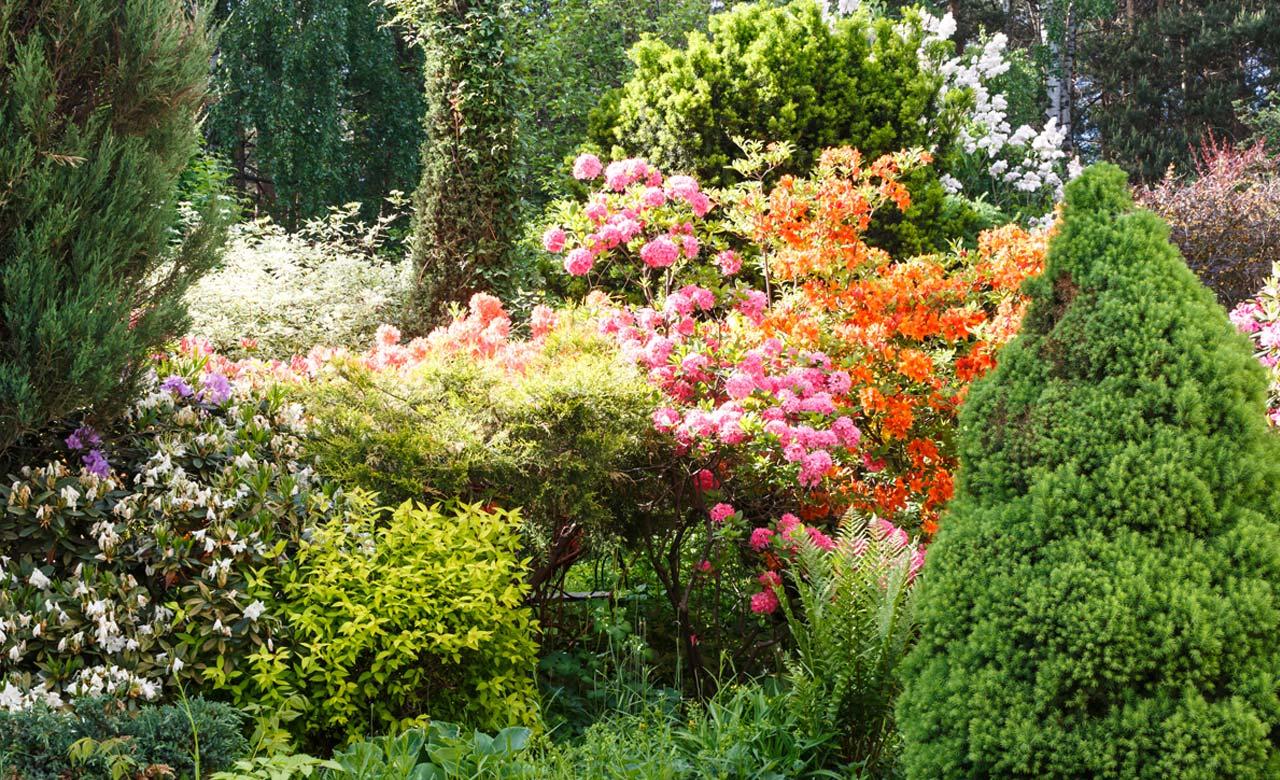 Gartengestaltung Langenfeld Nordrhein-Westfalen